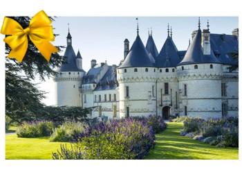 Billet Domaine de Chaumont-sur-Loire